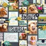 Today's Tsubasa
