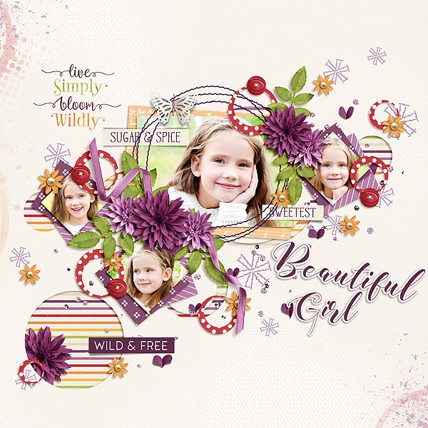 Layout Sample of Dahlia | Collection