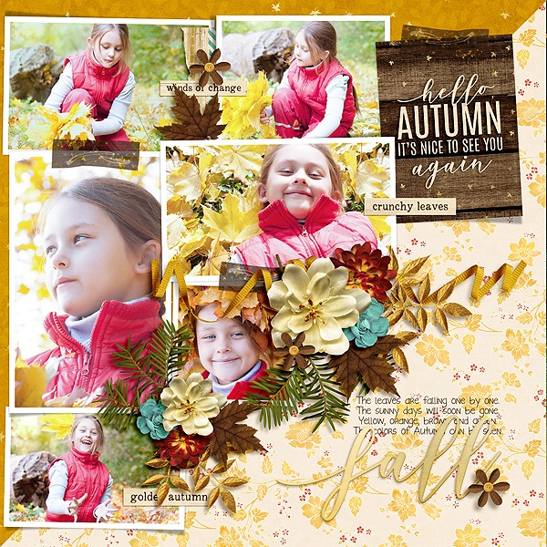 Layout Sample of Photo Addict 10 | Templates
