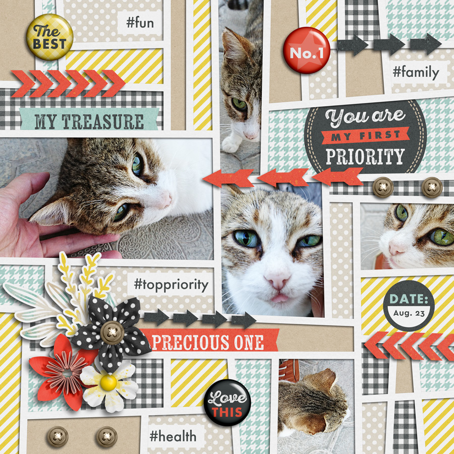 Layout Sample of Priorities | Kit by Akizo Designs