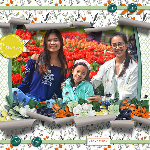 Layout Sample of Torn Paper Play 08 | Templates